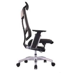 Scaun ergonomic Genidia